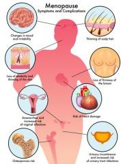 Hormone - ganz natürlich! - Menopause